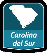 South Carolina Contractor Licenses