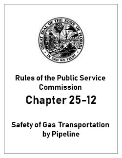 Safety of Gas Transportation Pipeline